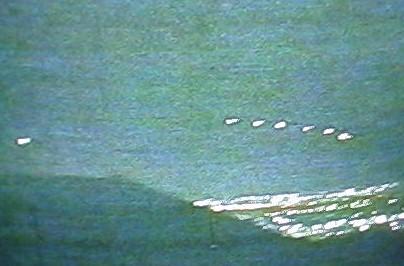 CONFIRMATION-UFO SIGHTING 1997 PHOTO